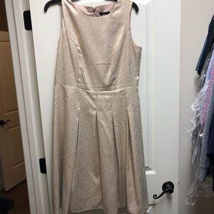 Tommy Hilfiger Gold Dot Dress